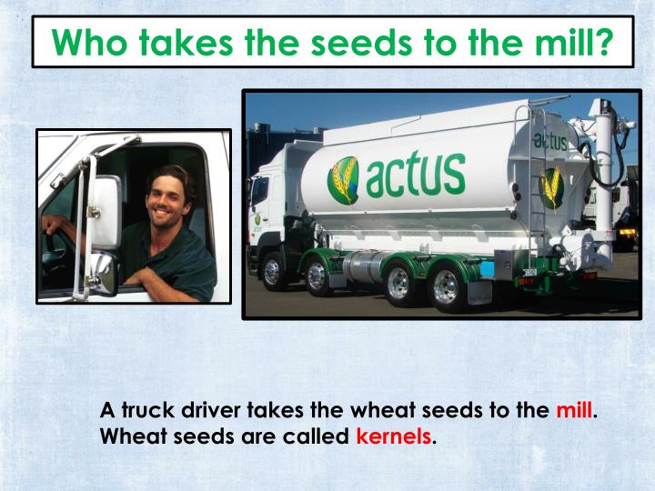 Who takes the seeds to the mill?