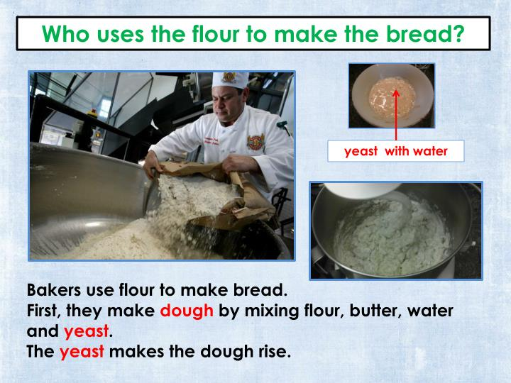 Who uses the flour to make the bread?