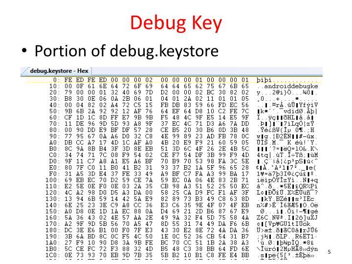Debug Key