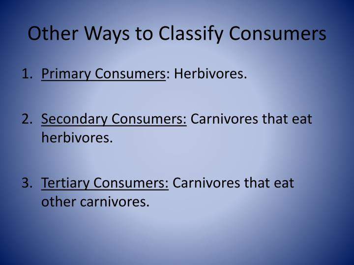 Other Ways to Classify Consumers