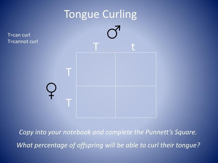 Tongue Curling