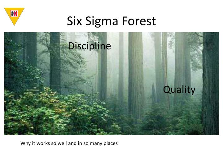 Six Sigma Forest