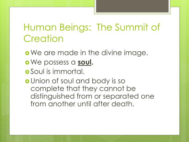 Human Beings:  The Summit of Creation