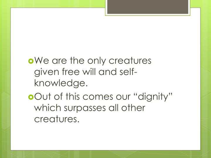 We are the only creatures given free will and self-knowledge.