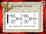 topology of anns