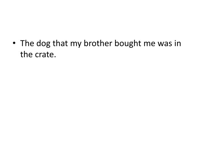 The dog that my brother bought me was in the crate.