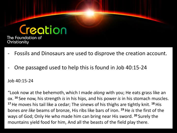 Fossils and Dinosaurs are used to disprove the creation account.