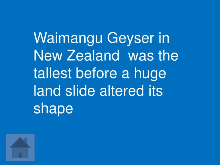 Waimangu Geyser in New Zealand  was the tallest before a huge land slide altered its shape