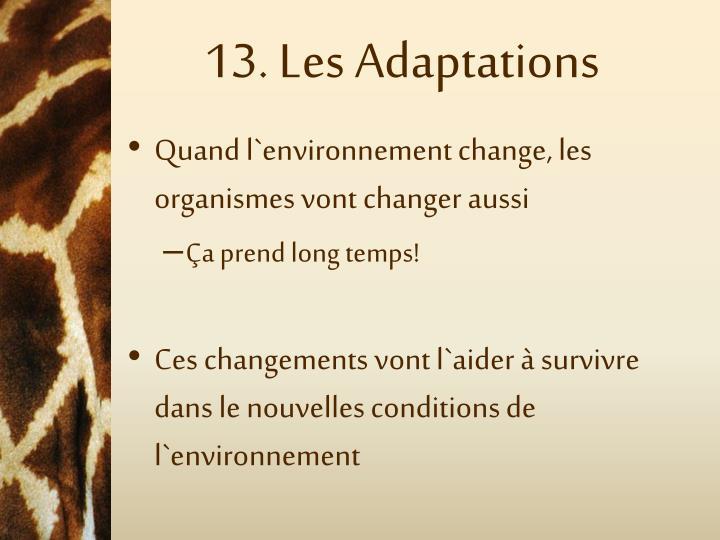 13. Les Adaptations