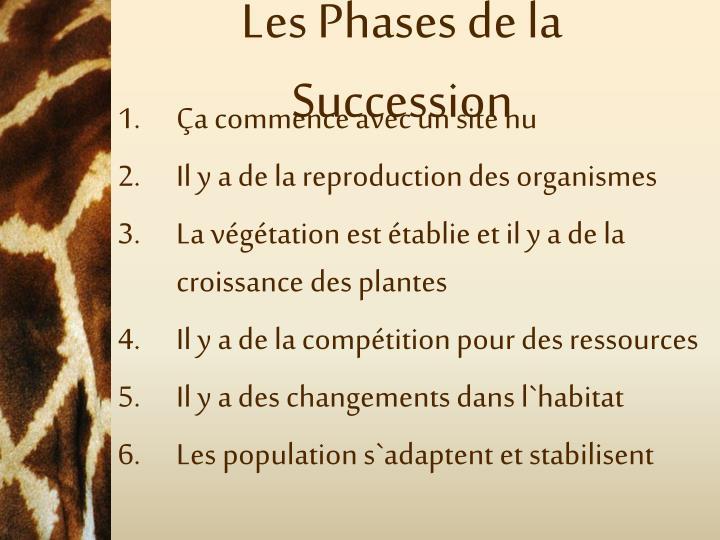 Les Phases de la Succession