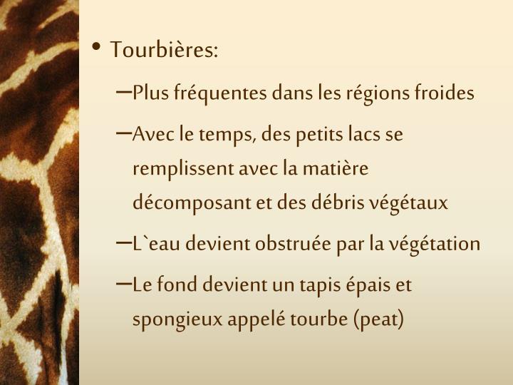 Tourbières: