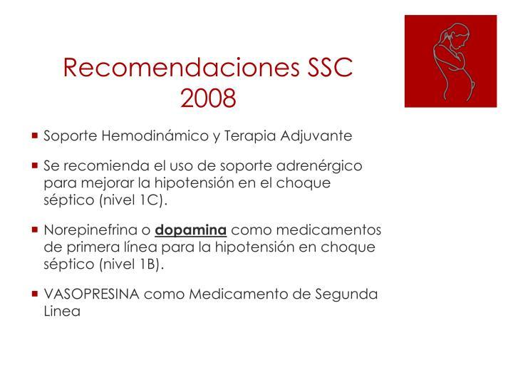 Recomendaciones SSC 2008