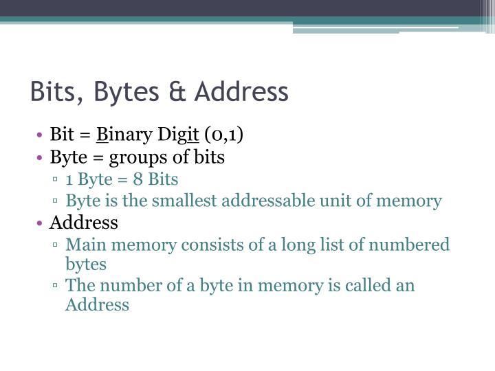 Bits, Bytes & Address