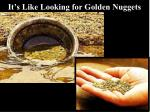 it s like looking for golden nuggets