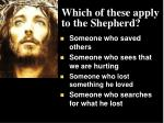 which of these apply to the shepherd