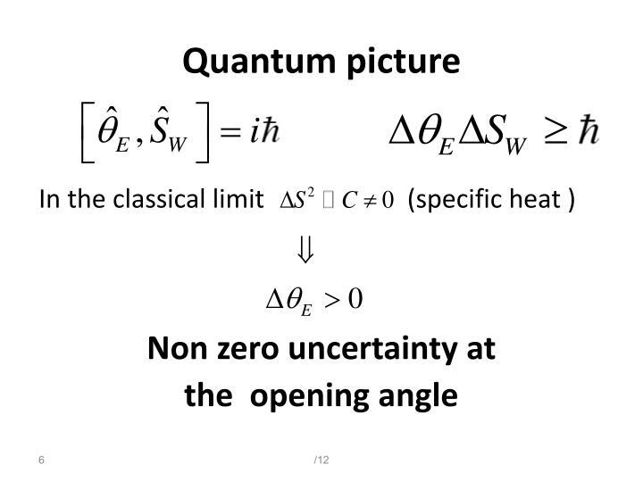 Quantum picture