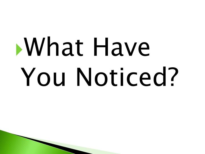 What Have You Noticed?