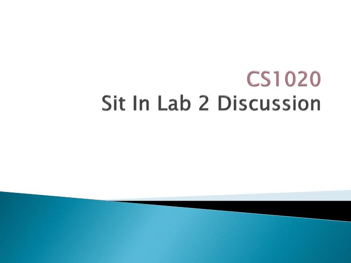 Cs1020 sit in lab 2 discussion