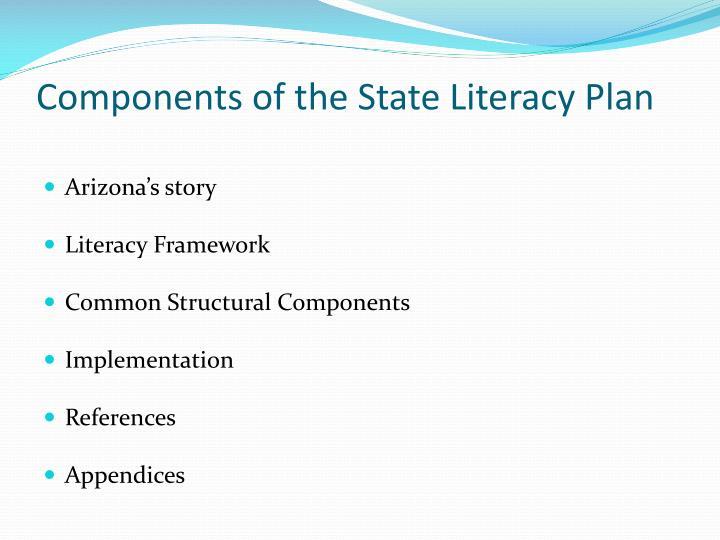 Components of the State Literacy Plan