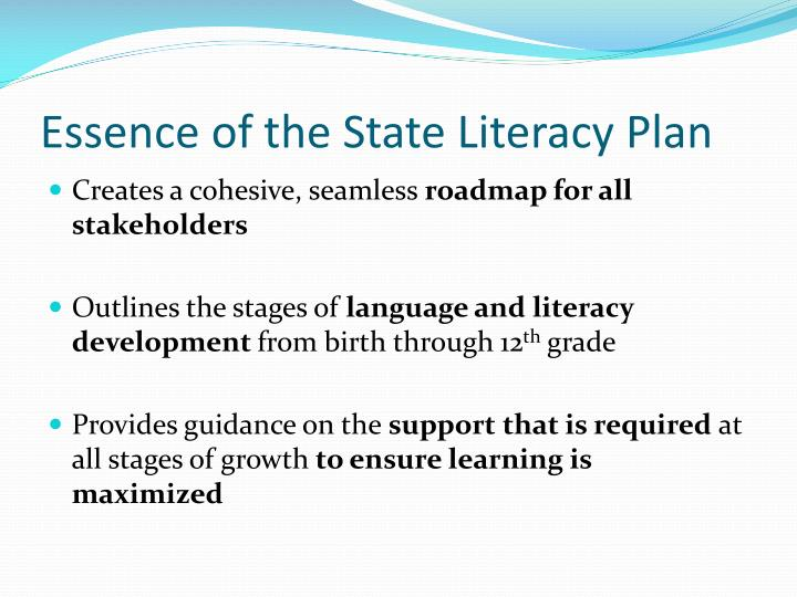 Essence of the State Literacy Plan