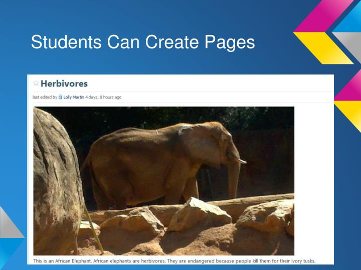 Students Can Create Pages
