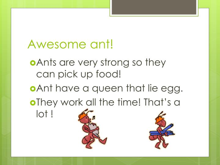 Awesome ant!