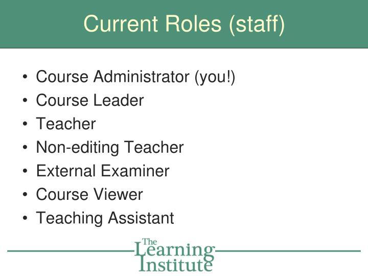 Current Roles (staff)