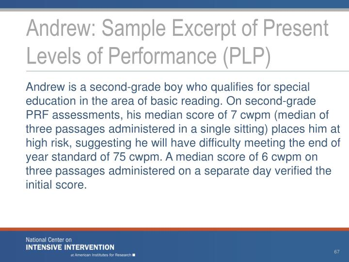 Andrew: Sample Excerpt of Present Levels of Performance (PLP)