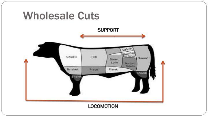 Wholesale Cuts