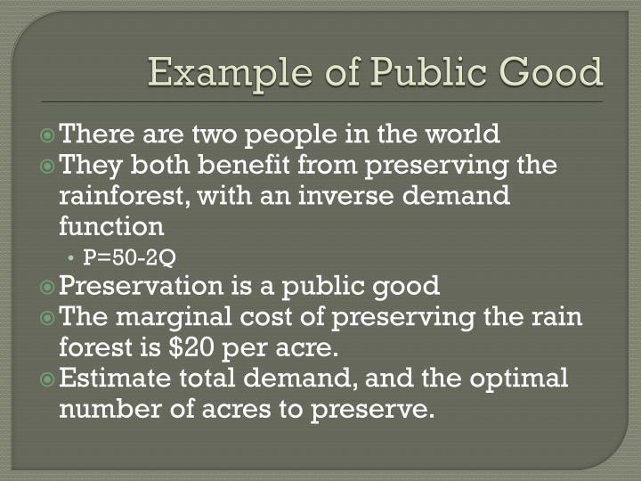 Example of Public Good