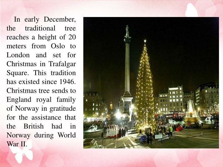 In early December, the traditional tree reaches a height of 20 meters from Oslo to London and set for Christmas in Trafalgar Square. This tradition has existed since 1946. Christmas tree sends to England royal family of Norway in gratitude for the assistance that the British had in Norway during World War II.