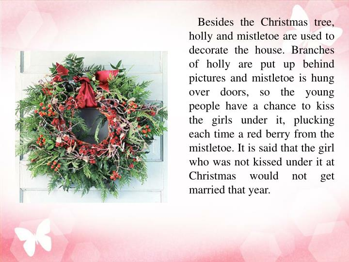 Besides the Christmas tree, holly and mistletoe are used to decorate the house. Branches of holly are put up behind pictures and mistletoe is hung over doors, so the young people have a chance to kiss the girls under it, plucking each time a red berry fro