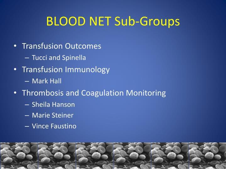 BLOOD NET Sub-Groups