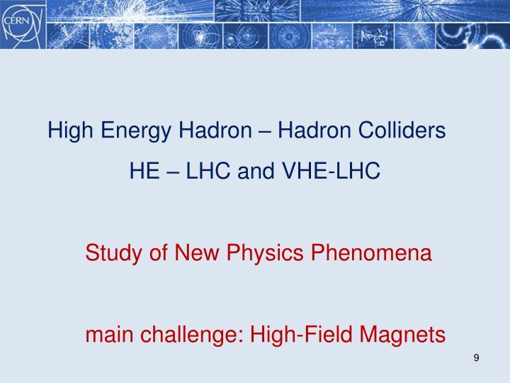 High Energy Hadron – Hadron Colliders