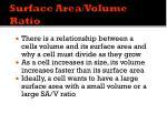 surface area volume ratio