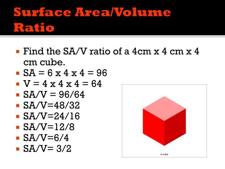 Surface Area/Volume Ratio