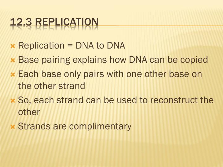 Replication = DNA to DNA