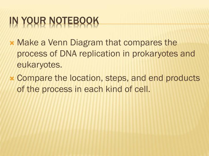 Make a Venn Diagram that compares the process of DNA replication in prokaryotes and eukaryotes.