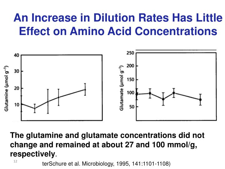 An Increase in Dilution Rates Has Little Effect on Amino Acid Concentrations