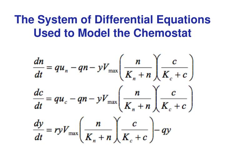 The System of Differential Equations Used to Model the