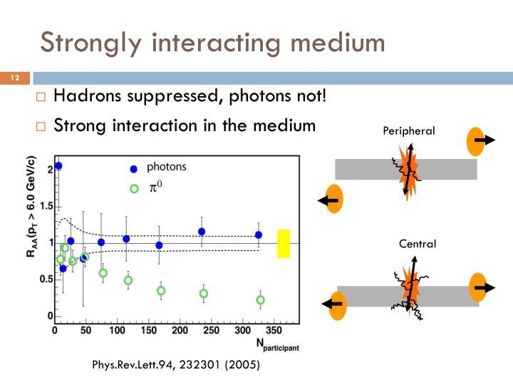 Strongly interacting medium