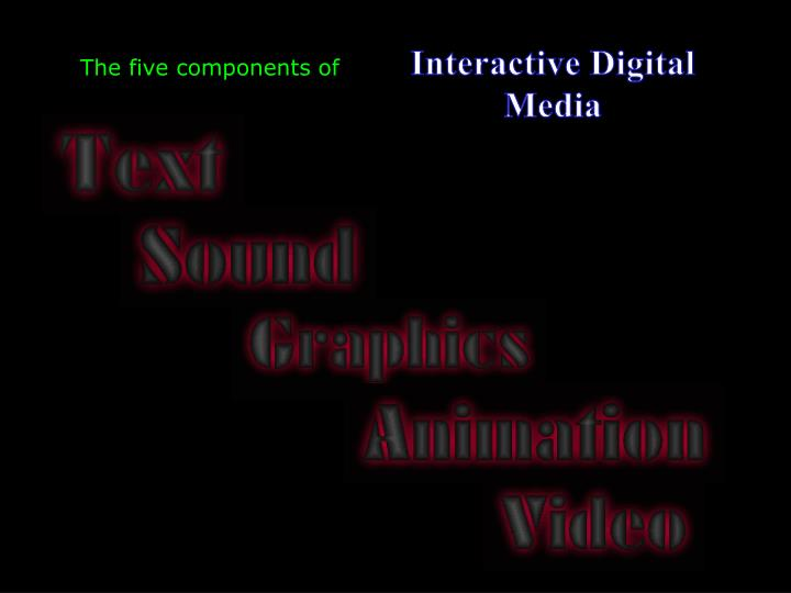 Interactive Digital Media