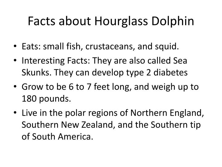 Facts about Hourglass