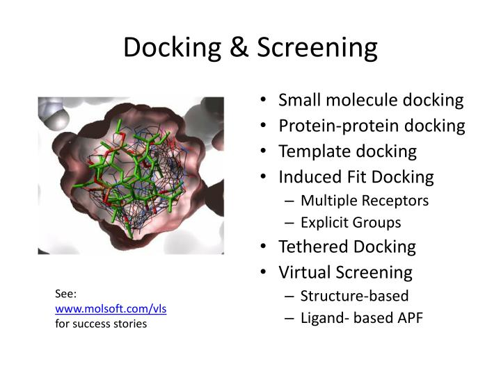 Docking & Screening
