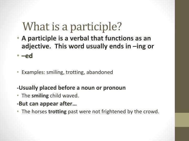 What is a participle?