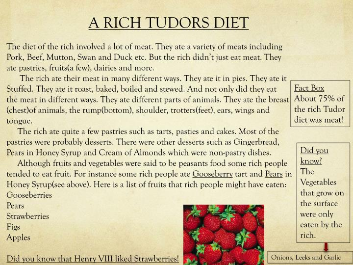 A RICH TUDORS DIET