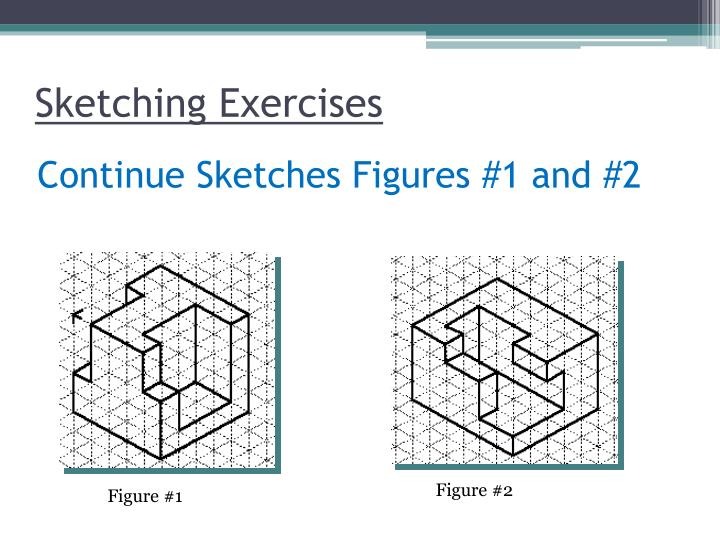 Sketching Exercises