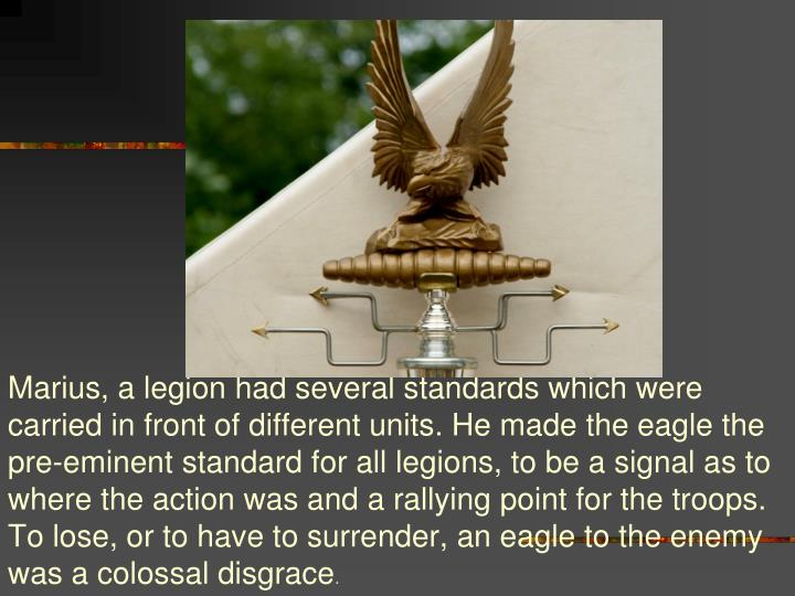 Marius, a legion had several standards which were carried in front of different units. He made the eagle the pre-eminent standard for all legions, to be a signal as to where the action was and a rallying point for the troops. To lose, or to have to surrender, an eagle to the enemy was a colossal disgrace