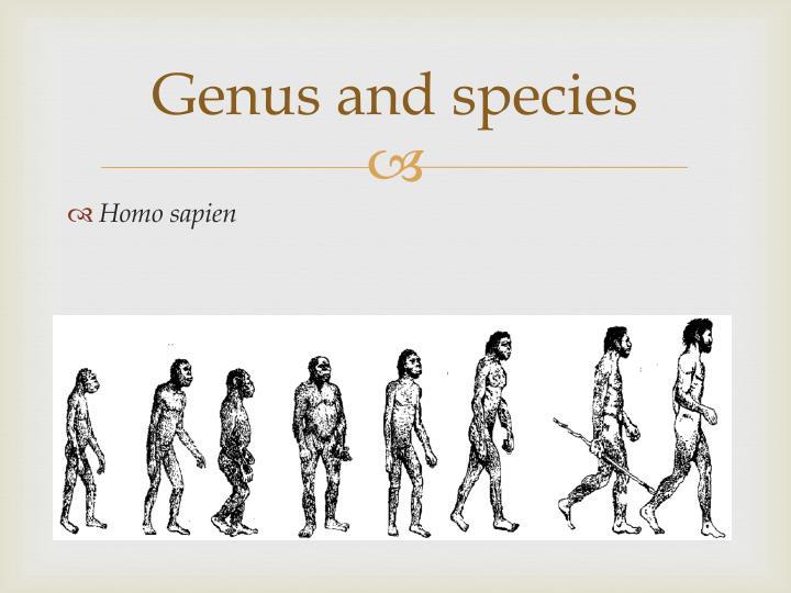 Genus and species