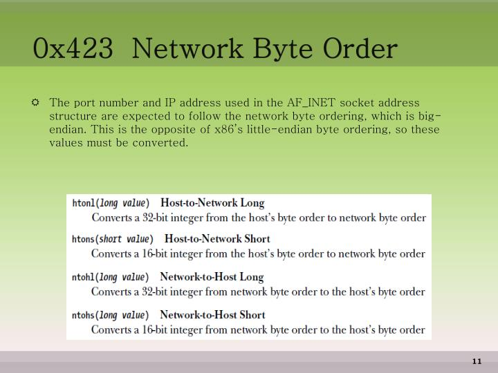 0x423  Network Byte Order